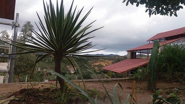 Découvrez l'Hacienda Mornag, une ferme de charme en pleine campagne de Mornag
