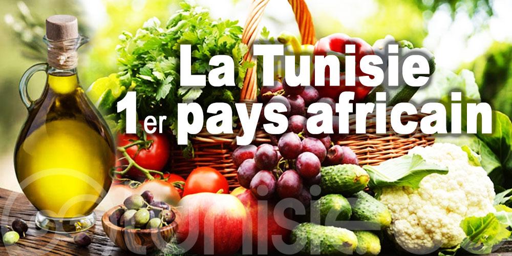La Tunisie, 1er pays africain exportateur de produits biologiques