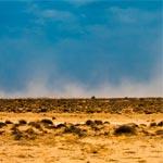 21'Gram-Invitation au voyage : Exposition de photos de Lilia El Golli à partir du 15 novembre à La Marsa