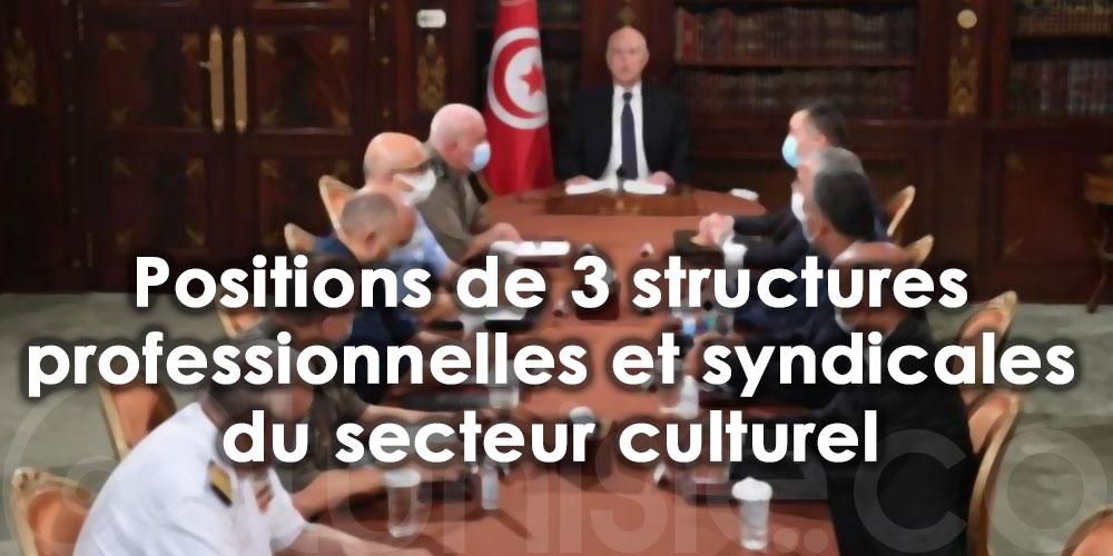 Les positions de trois structures professionnelles et syndicales du secteur culturel