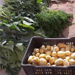 Lancement du marché bio, nature et terroir à partir du 7 février à Mutuelleville