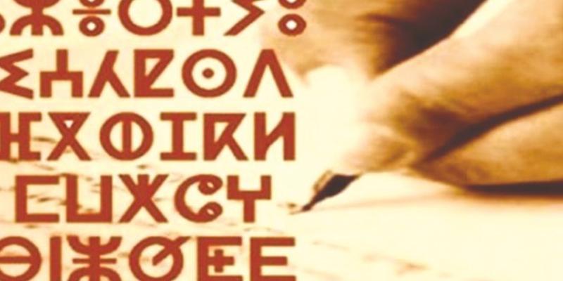 Le Tamazight bientôt sur Google translate