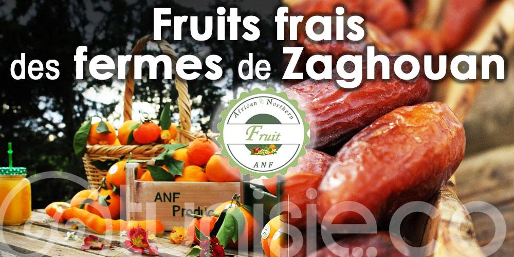 Du producteur au consommateur : Des fruits frais de chez African Northern Fruit