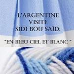 'L'Argentine visite Sidi Bou Saïd - En bleu ciel et blanc', le 18 novembre à La Galerie Hédi Turki