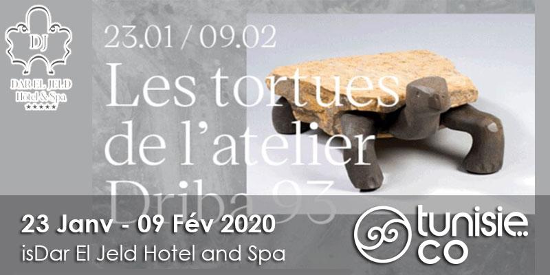 Les tortues de l'atelier Driba 93 du 23 Janvier au 09 Février 2020