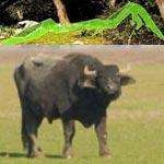ATR : Randonnée au Parc National d'Ichkeul dimanche 6 mai
