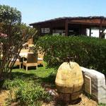 The Beach Bar and Restaurant : nouvelle adresse estivale à Hammamet