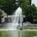 Fête de l'Arbre au parc du Belvédère les 12 et 13 novembre