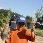 Reportage photos : la fête de l'arbre au Parc du Belvédère