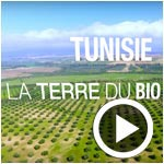 En vidéo : Redécouvrez la Tunisie, terre du Bio