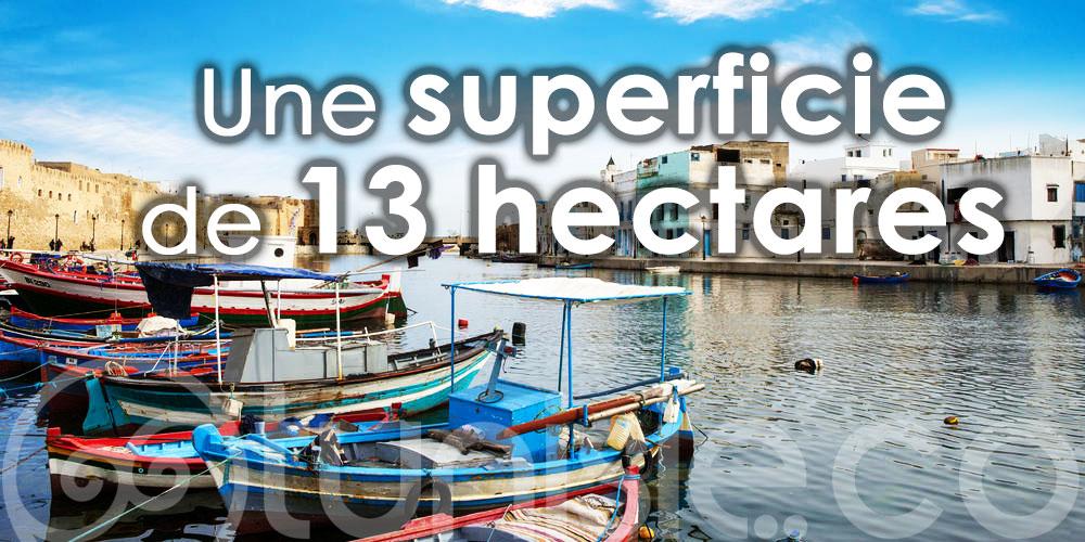 Bientôt, un port écologique à Bizerte