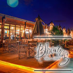 Ouverture du Blooming Resto Beach à Gammarth