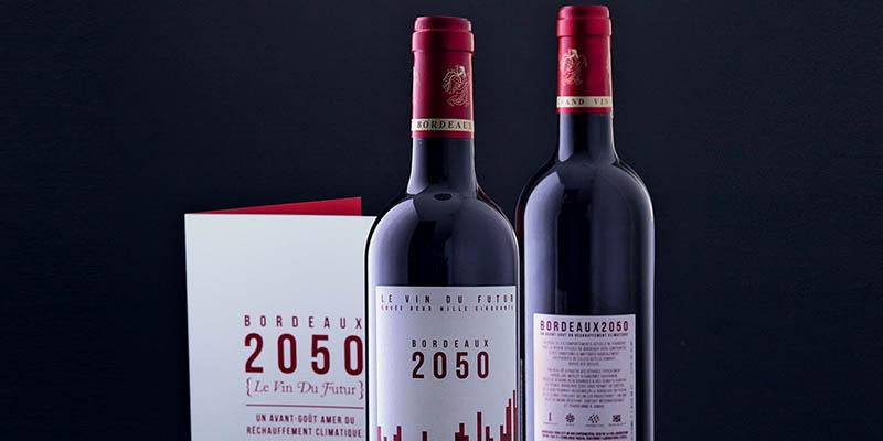 Le vin du futur, le Bordeaux 2050 sera tunisien