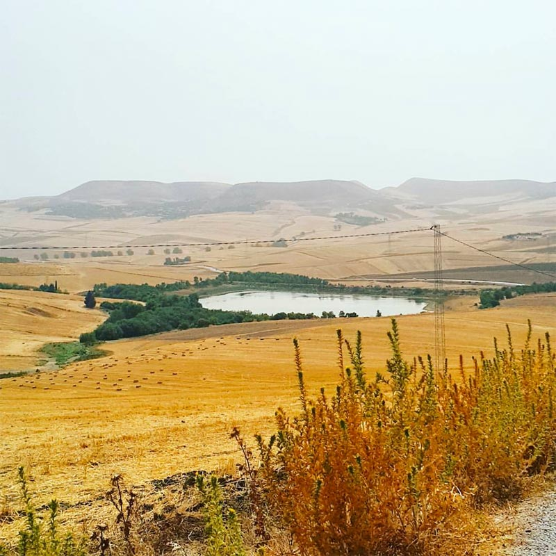 Découvrez l'admirable Borj Lella, un paradis en pleine campagne de Béja