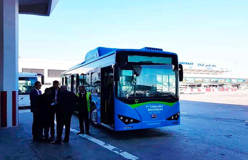 bus-311218-2.jpg