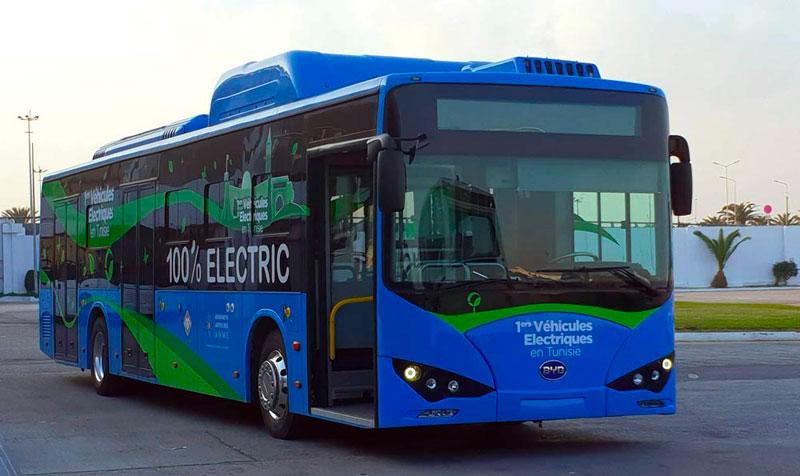 bus-311218-3.jpg