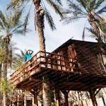 En photos : Ces cabanes en bois pour un magnifique séjour en pleine nature
