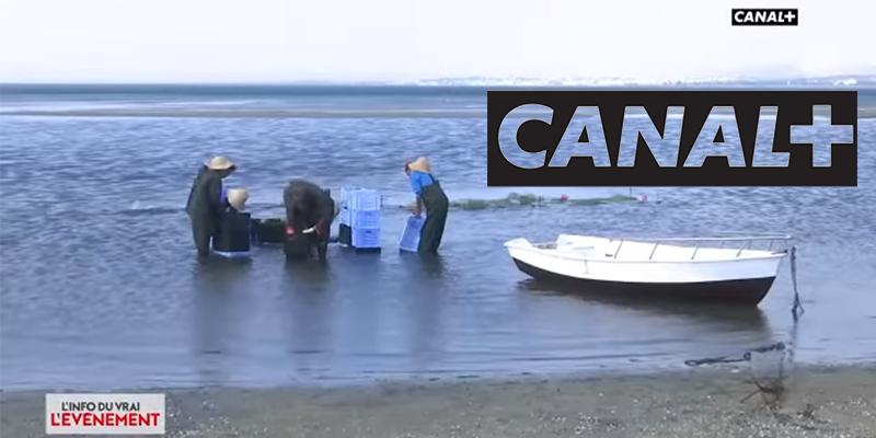 Canal + présente un projet de traitement biologique d'algues marines à Bizerte