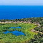 Randonnée et baignade le 5 Juin à Cap Hmem