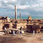 Une journée à Carthage: Vestiges-Déjeuner-Visites