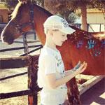 Un atelier de peinture sur chevaux ce samedi 13 août