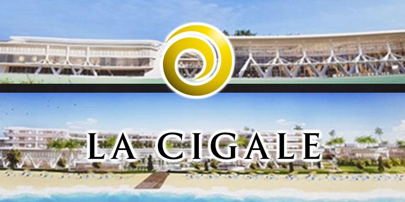 cigale-230917-1.jpg