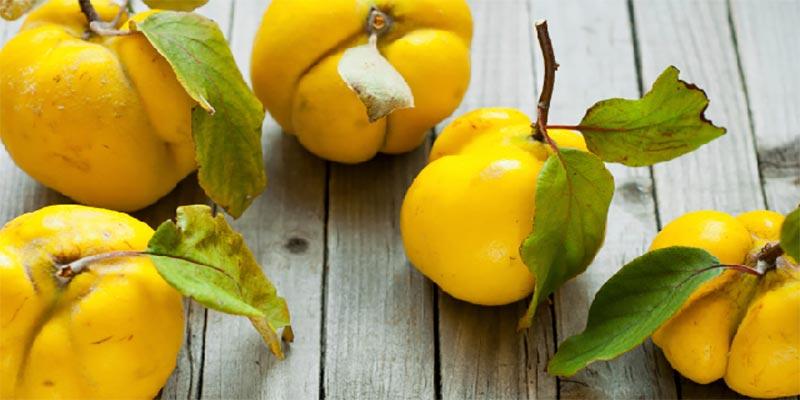La saison du coing : des astuces culinaires et beauté pour profiter de ses bienfaits