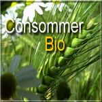 5 adresses pour consommer Bio en Tunisie !