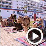 En vidéo : La belle ambiance du retour des bateaux de croisières à la Goulette