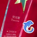 En photos : La plus grande agence de voyage en ligne en chine honore la Tunisie