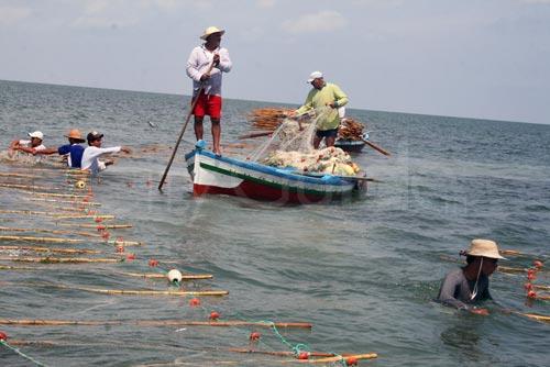 pêche a zarzis tunisie