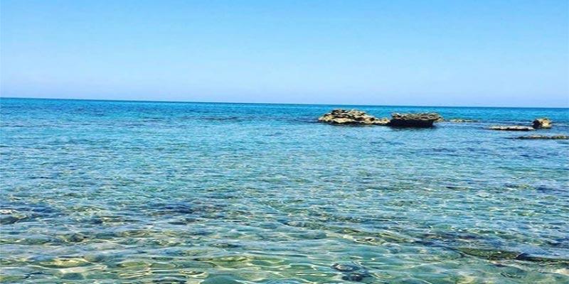 Plage Dar Allouch : Baignez-vous dans une mer fascinante