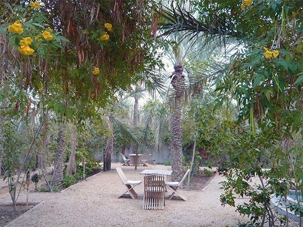 Dar El Kobba, un coin de paradis au plein cœur de Tozeur