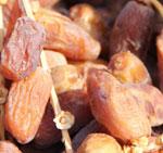 Dattes : La nouvelle récolte sur le marché