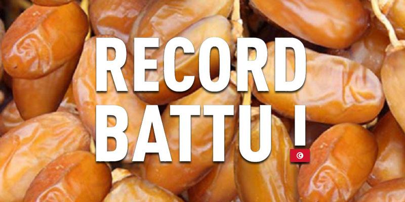 La récolte des dattes : Tous les records sont battus