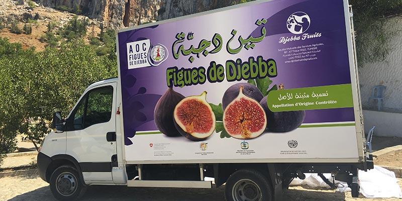 Désormais, la figue de Djebba livrée à Tunis par un camion frigorifique