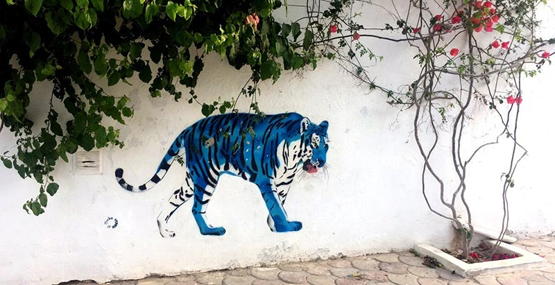 djerbahood-streetart-140818-15.jpg