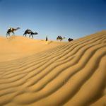 4 jours dans les Dunes
