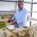 Monastir: Promotion du loofah ou l'éponge végétale naturelle