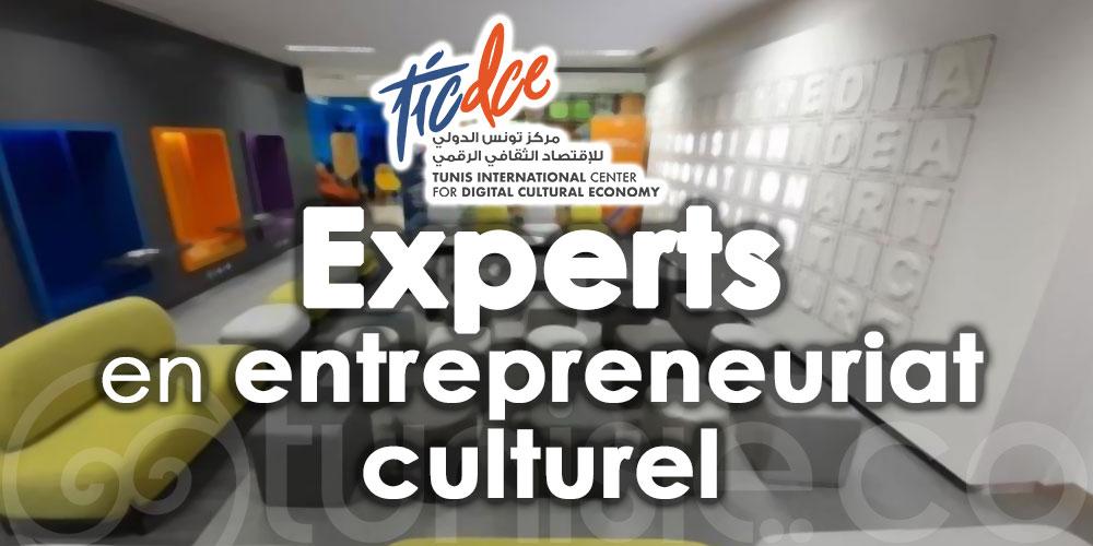Le Centre International de Tunis pour l'Economie Culturelle Numérique recrute des experts en entrepreneuriat culturel