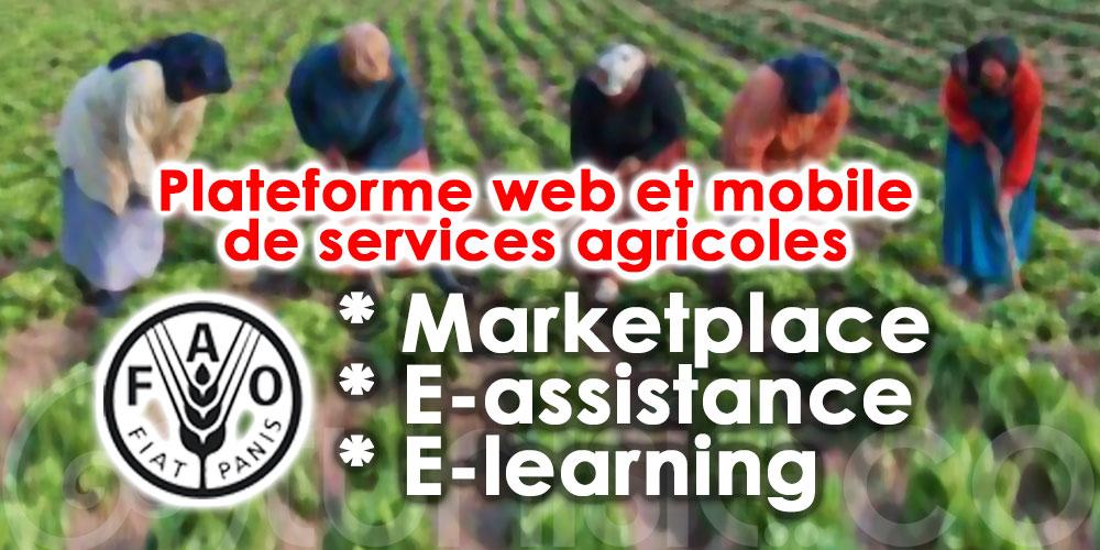 Aggricus : Une plateforme digitale pour les femmes agricultrices tunisiennes