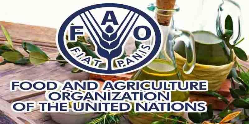 FAO : Un nouveau projet de contrôle qualité des produits de terroir