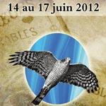Festival de l'épervier d'El Haouaria du 14 au 17 juin 2012