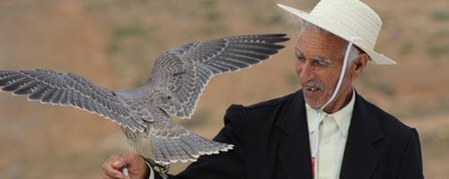 En photos : ambiance du festival de l'épervier 2012 à El Haouaria