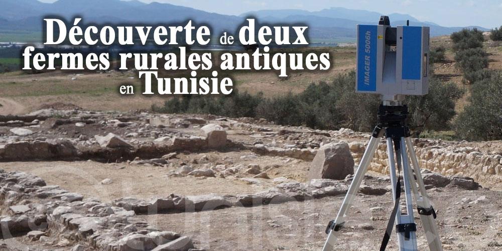 Découverte de deux fermes rurales antiques en Tunisie