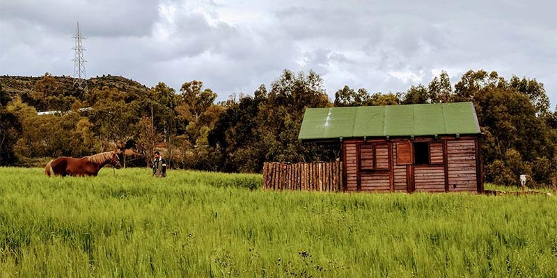En photos : Découvrez ces fermes en pleine campagne à visiter en famille