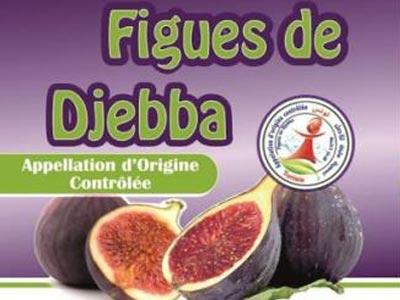 Connaissez-vous Bouhouli, la reine des figues de Djebba ?