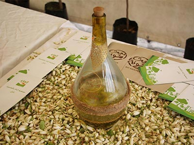 En vidéo : La distillation traditionnelle de l'eau de fleurs d'oranger à Nabeul