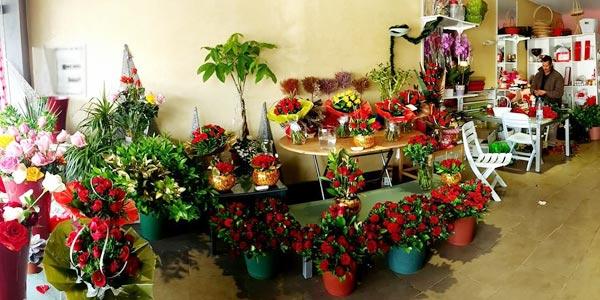 Envie d'un bouquet de fleurs pour la Saint-Valentin ? Les adresses Tunisie.co