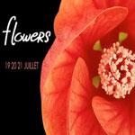 Flowers : La 4ème édition de In the Mood For Talent du 19 au 21 Juillet à Dar el Marsa